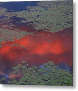 Sunset Reflection In Pond Metal Print