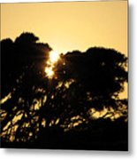 Sunset Silhouette II Metal Print