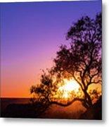 Sunset Silhouette Metal Print