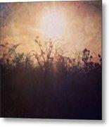 Sunset Song Metal Print