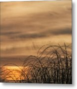 Sunset Through The Seagrass Metal Print