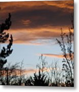Sunset Thru The Trees Metal Print