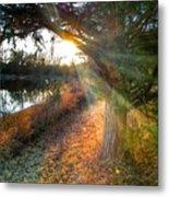 Sunset Trails  Metal Print