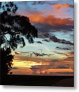 Sunset Tree Florida Metal Print