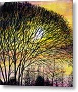 Sunset Tree Silhouette Metal Print