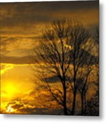 Sunset With Backlit Trees Metal Print
