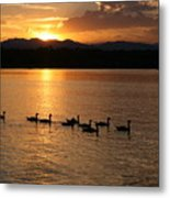 Sunset With Geese 2 Metal Print