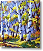 Sunshine And Birches Metal Print