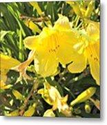 Sunshine And Flowers Metal Print