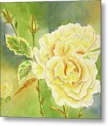 Sunshine And Yellow Roses Metal Print