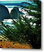 Sunshine At The Coast Metal Print