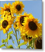 Sunshine Happy Metal Print