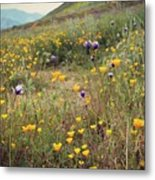 Super Bloom Metal Print