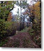 Superior Hiking Trail Metal Print