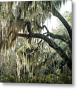 Surreal Gothic Savannah Georgia Trees With Hanging Spanish Moss Metal Print