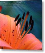 Surreal Orange Lily Metal Print