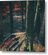 Surreal Red Leaves In A Dark Forest Finland Metal Print