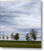 Surreal Trees And Cloudscape Metal Print