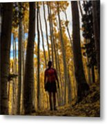 Surrounded By Nature Metal Print