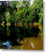 Suwannee River Metal Print