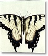 Swallow-tail Butterfly Metal Print