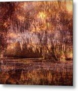 Swamp 3 Metal Print
