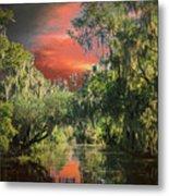 Swamp 1 Metal Print