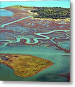 Swamp Area In Venice Metal Print by By LTCE