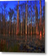 Swamp In Cypress Gardens Metal Print