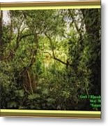 Swamp L A With Decorative Ornate Printed Frame. Metal Print