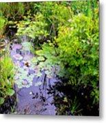 Swamp Plants Metal Print