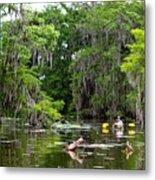 Swamp Stroll Metal Print