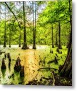 Swampland Dreams Metal Print