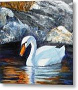 Swan By Rocks Metal Print