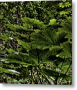 Swan Creek Foliage Metal Print