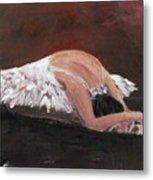 Swan Despair 2 Metal Print