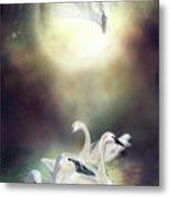 Swan Dreams Metal Print