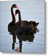 Swan Lake 5 Metal Print