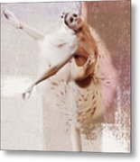 Swan Lake Dance  Metal Print