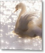Swan Of The Glittery Early Evening Metal Print