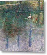 Swan On Town Lake - Now Lady Bird Lake Metal Print