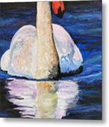 Swan Wildlife Art Metal Print