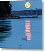 Swans And The Moonrise In Stockholm Metal Print