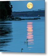 Swans Gliding Into The Moonlight During A Moonrise In Stockholm Metal Print