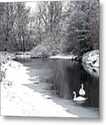 Swans In The Snow Metal Print