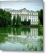 Swans On Austrian Lake Metal Print