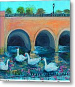Swans On The Charles River Metal Print