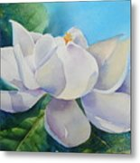 Sweet Magnolia Metal Print by Bobbi Price