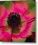 Sweet Poppy Seed Metal Print