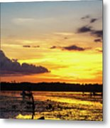 Drawin The Fish At Last Light Metal Print